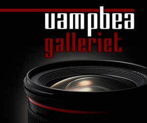 VampBea's Galleri